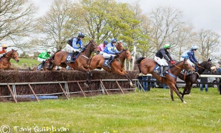 Ballysteen Point-to-Point set for another successful meeting