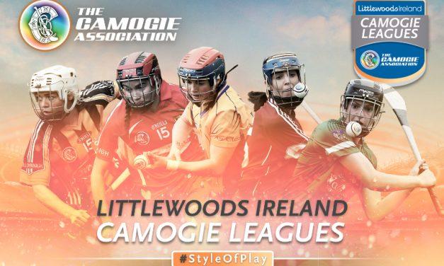 Limerick Ladies look to reach Div 1 Camogie Final