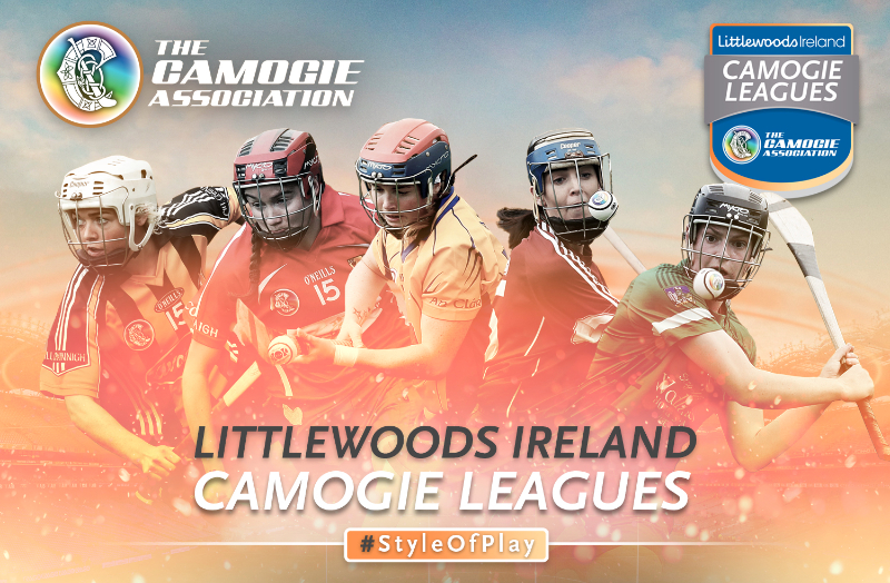 Limerick Ladies look to reach Div 1 Camogie Final