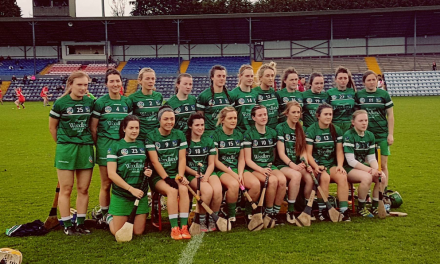 What Limerick need to happen to reach All Ireland Camogie Quarter Finals