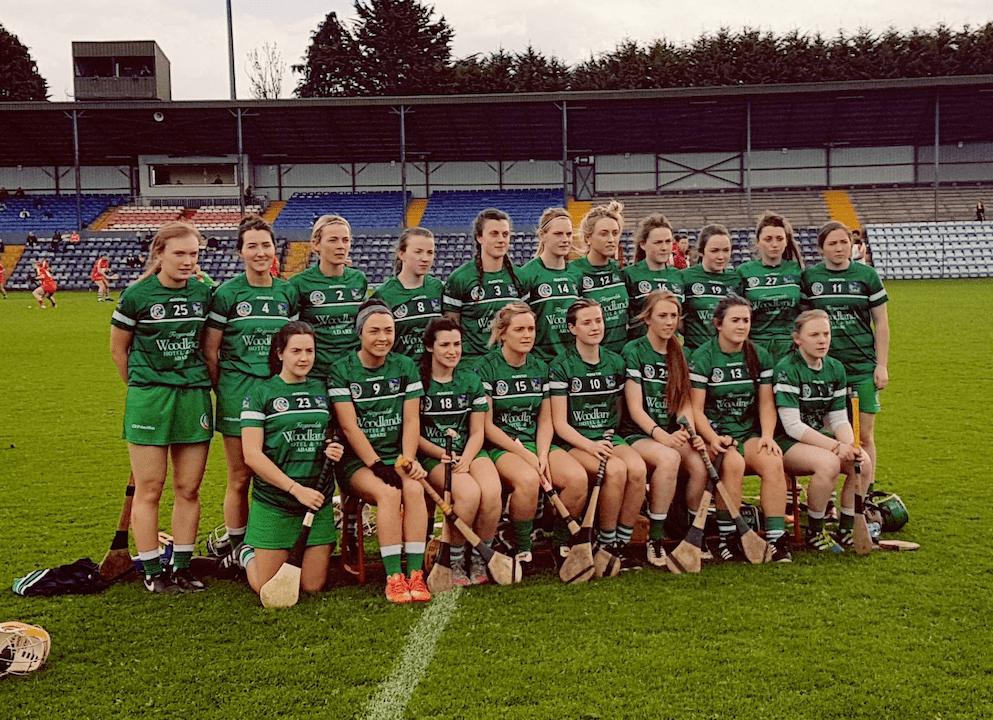Limerick Camogie Team