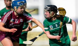 Limerick Camogie player