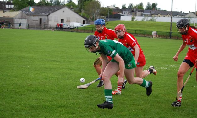 Limerick Camogie make history with first Munster title win