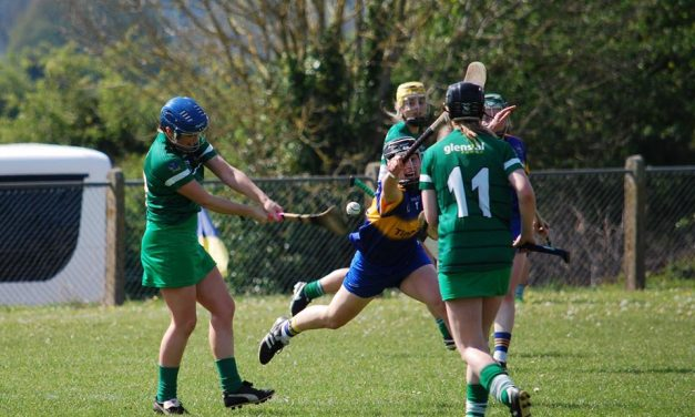 Limerick face Cork in Munster Senior Camogie Final