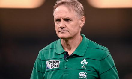 Joe Schmidt is an option for NZRU post Hansen's 2019 departure