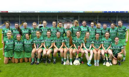 Limerick out of Camogie Championship following Wexford loss