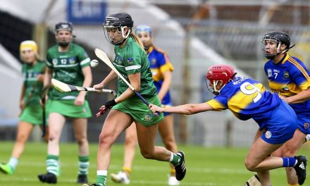 Limerick Camogie know exact requirements to reach All Ireland 1/4 Final