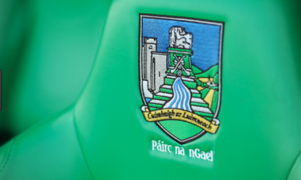 Limerick minor hurling panel for Munster Championship.