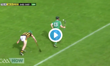 WATCH: Highlights of Limerick's win over Kilkenny at the weekend