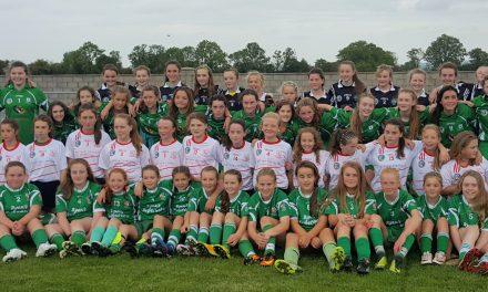 Limerick Camogie run successful U13 & U8 blitz competitions