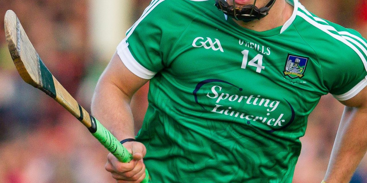 Limerick Hurlers put in clinical display to claim top spot in Division 1B