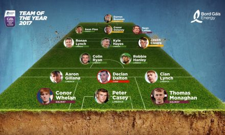 Eight Limerick players included in Under 21 Team of The Year