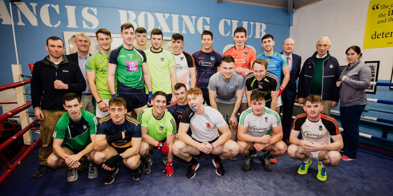 Limerick hurlers finalise boxing lineup for fundraising bouts