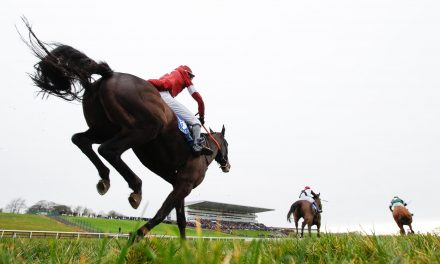 Racing goes ahead as scheduled for day three of Limerick Christmas Racing Festival
