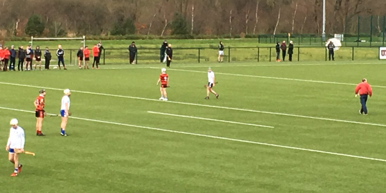 Mary I prove too strong for spirited Trinity side in Fitzgibbon Cup