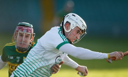 Limerick beat Kerry to book Coop Superstores final with Clare