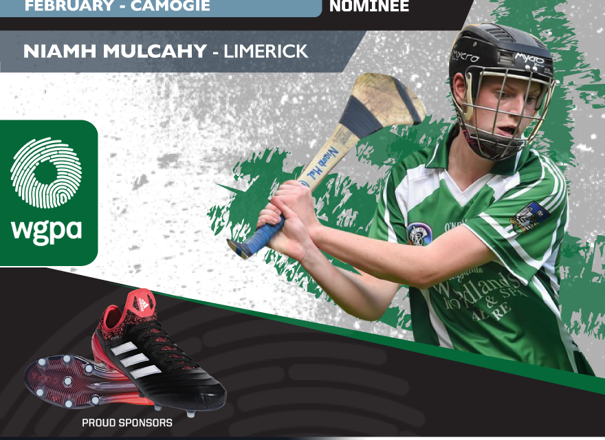 Limerick's Niamh Mulcahy nominated for WGPA February Player of the Month