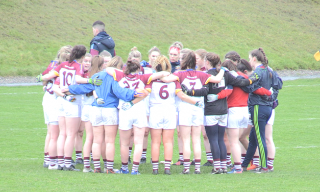 "Listen: UL manager DJ Collins predicting a ""dogfight"" semi final against UCC"