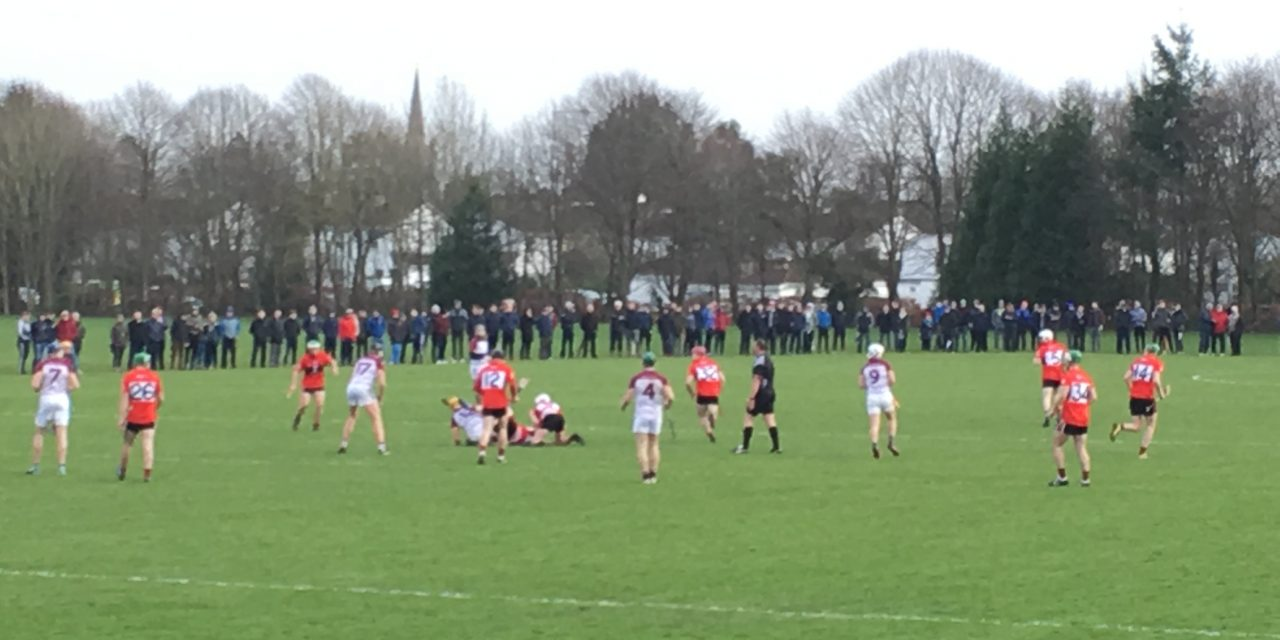 UL roar into Fitzgibbon Cup Semi-Final
