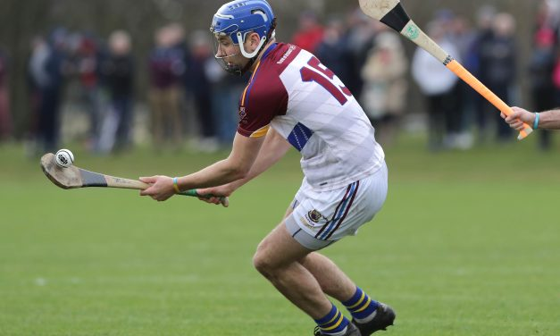 Star studded UL face DCU in Fitzgibbon Cup Final