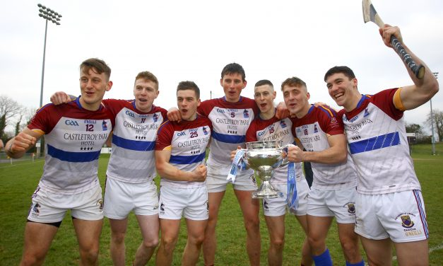 Seven UL players make Fitzgibbon team of the year