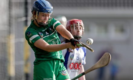 WATCH: Full highlights of Limerick Camogie's draw with Waterford