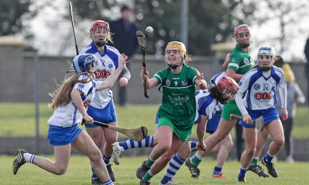WATCH: Limerick camogie side seal semi final spot with Waterford draw