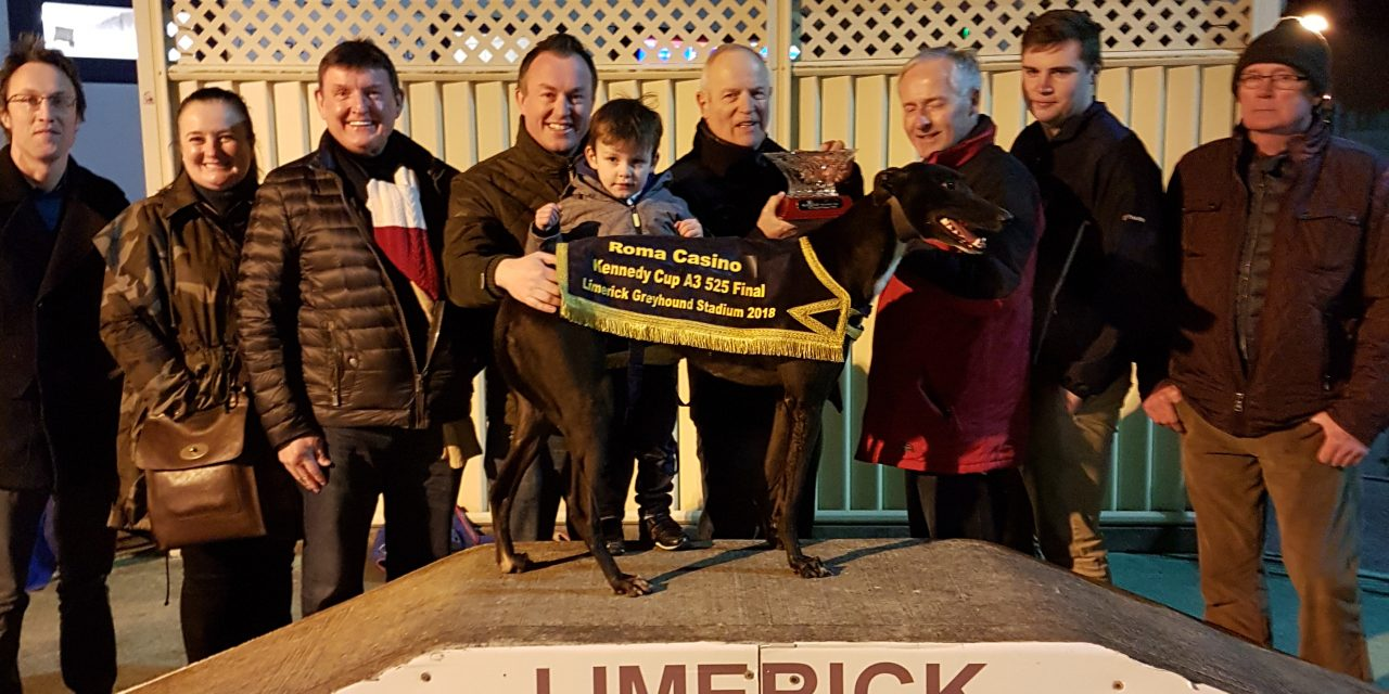 Mulcair Wonder the star of the show at Limerick Greyhound Stadium