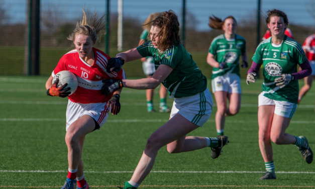 Limerick Ladies lose out to Louth in Division 4 league clash