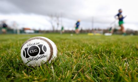 Declan Nash put forward for ratification as next Limerick Camogie manager