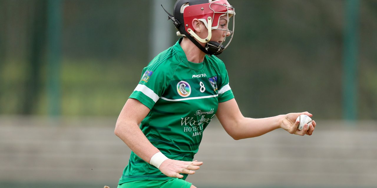 Limerick camogie face must win tie with Waterford as qualification out of their hands