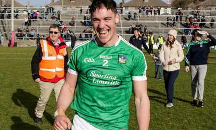 WATCH – Limerick hurlers reach Division 1A for first time in 8 years