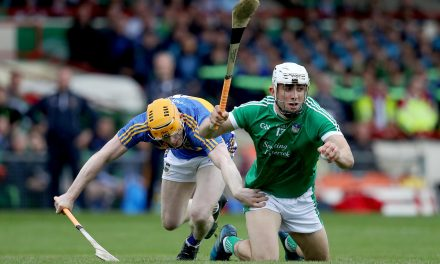 Three Limerick stars in hurling team of the week