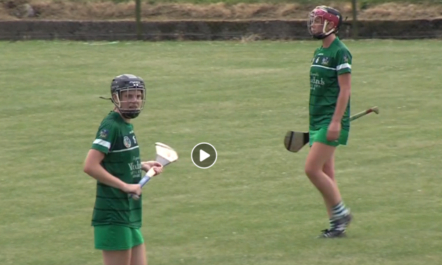 WATCH – Galway prove too strong for Declan Nash's Limerick