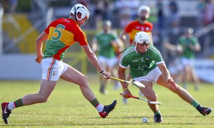 Two Limerick stars included in GAA hurling TOTW