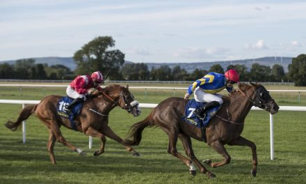 Continued success for Limerick Jockeys Chris Hayes and Billy Lee