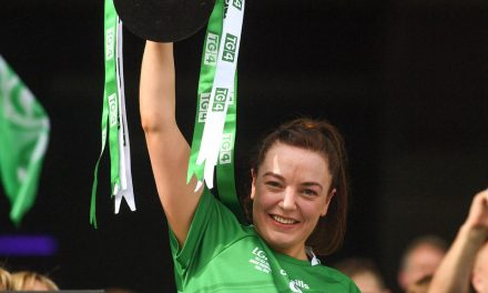 WATCH: Limerick captain Mee ecstatic after 'up and down year'