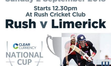 Limerick Cricket Club chase glory in National Cup Final
